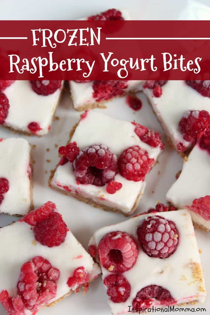 Frozen Raspberry Yogurt Bites