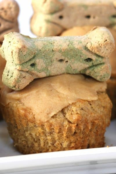 Celebration Peanut Butter Banana Pupcakes are the perfect way to show your four-legged friend just how special they are. Filled with dog-safe ingredients, they are a delicious sweet treat! #inspirationalmomma #pupcakes #birthday #treat #dog #puppy #pup #canine #cupcakes #celebration #peanutbutter #banana #dogtreat #homemade