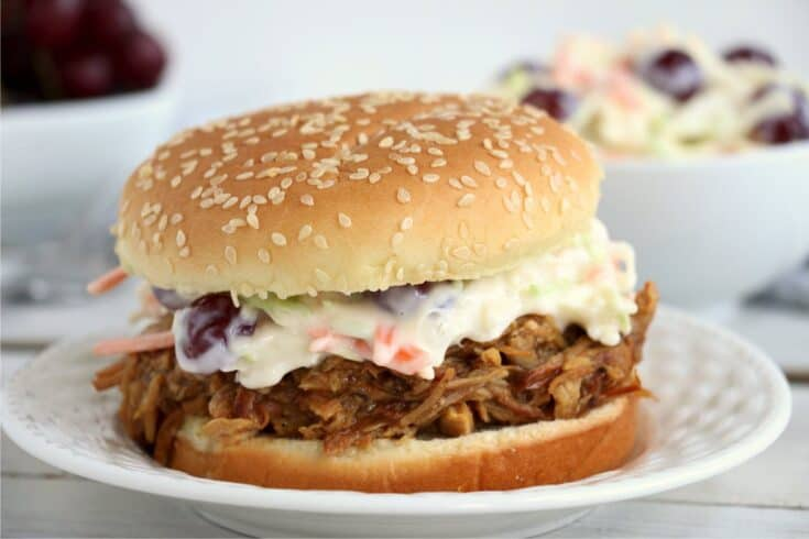 Crock Pot BBQ Pulled Pork - Easy and Delicious