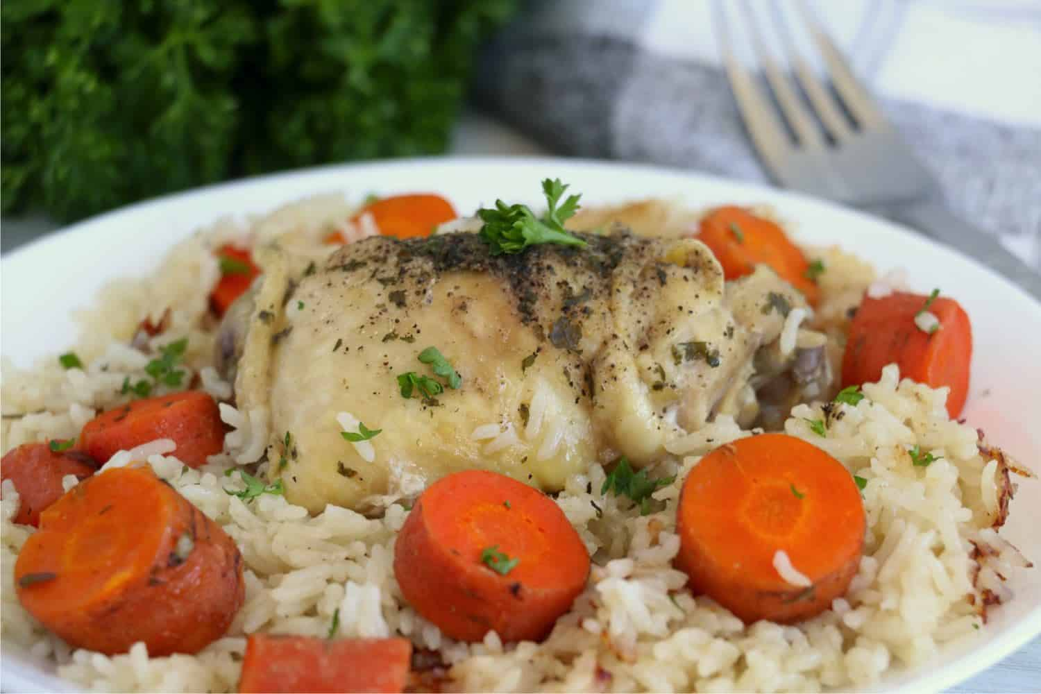 A close-up photo of Instant Pot Frozen Chicken and Rice