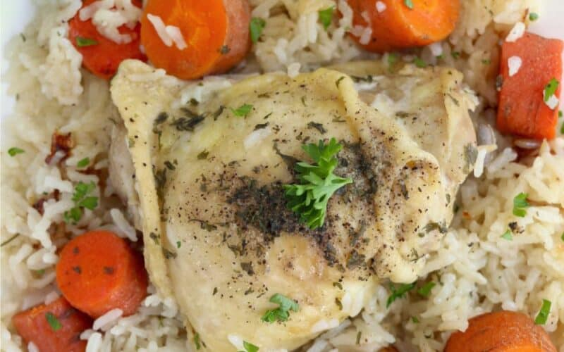 Instant Pot Frozen Chicken and Rice