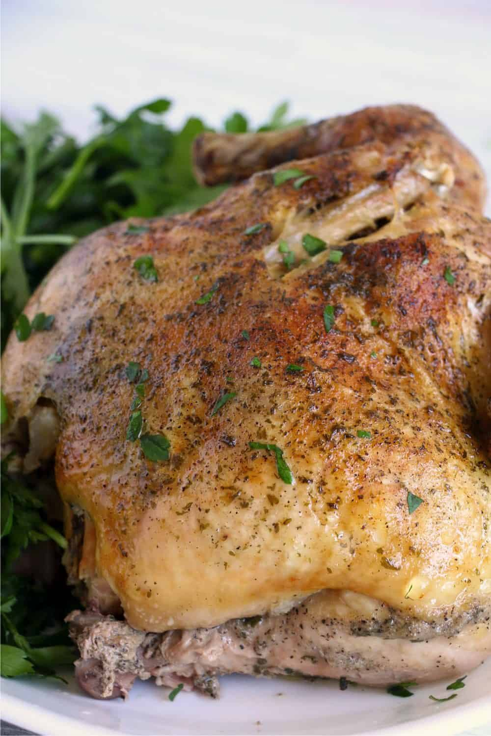 A cooked Ninja Foodie whole chicken with perfectly golden roasted skin